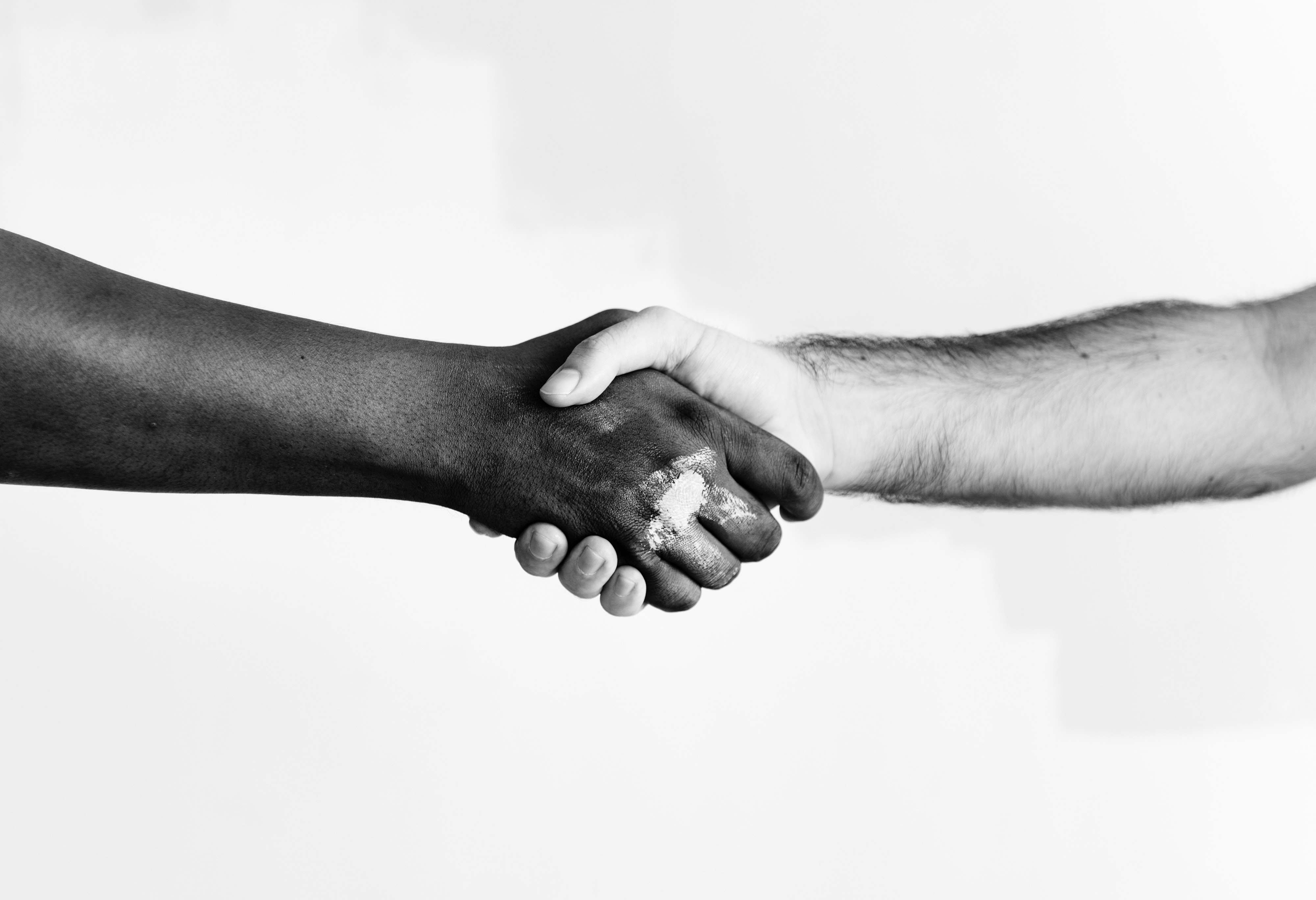 black-and-white-color-cooperation-1389098