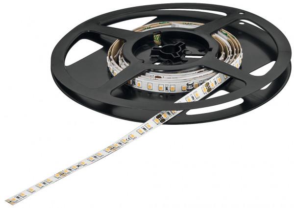 LOOX5 LED-Band 3048 monochrom 24V 8 mm 14,4 W/m