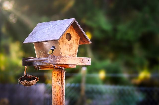 Vogelhaus-selber-bauen-3