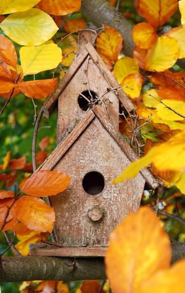 Vogelhaus-selber-bauen-2