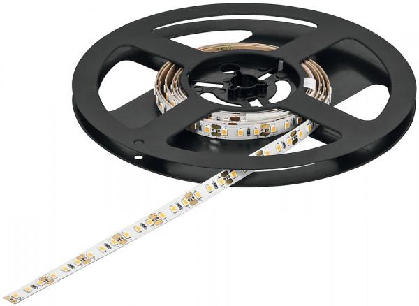 LOOX5 LED-Band 2065 monochrom 12V 8 mm 4,8 W/m