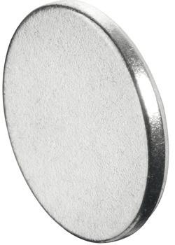 Häfele Gegenplatte H6033 für Magnetverschluss rund 1,4 kg