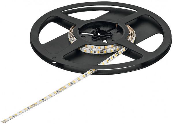 LOOX5 LED-Band 3041 monochrom 24V 5 mm 9,6 W/m